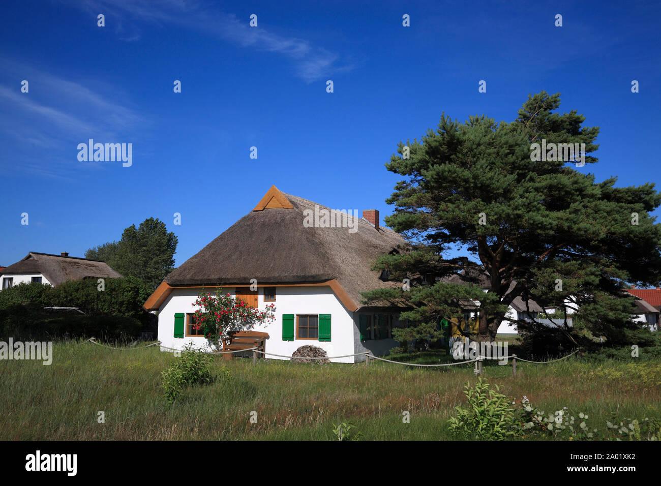 Neuendorf, thatched house, Hiddensee island, Baltic Sea, Mecklenburg Western Pomerania, Germany, Europe Stock Photo