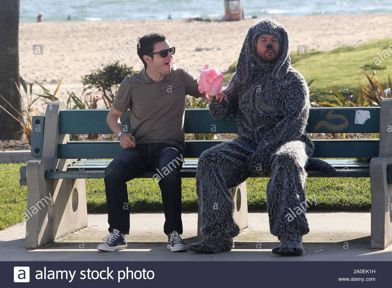 Venice Beach Ca Actor Elijah Wood Films A Segment For His New Tv Show Wilfred On