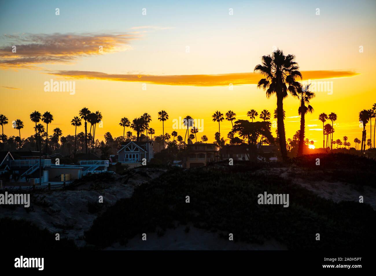 Sonnenaufgang hinter dem Palmenstrand am südlichen Ende von Big Sur in Kalifornien. Stock Photo
