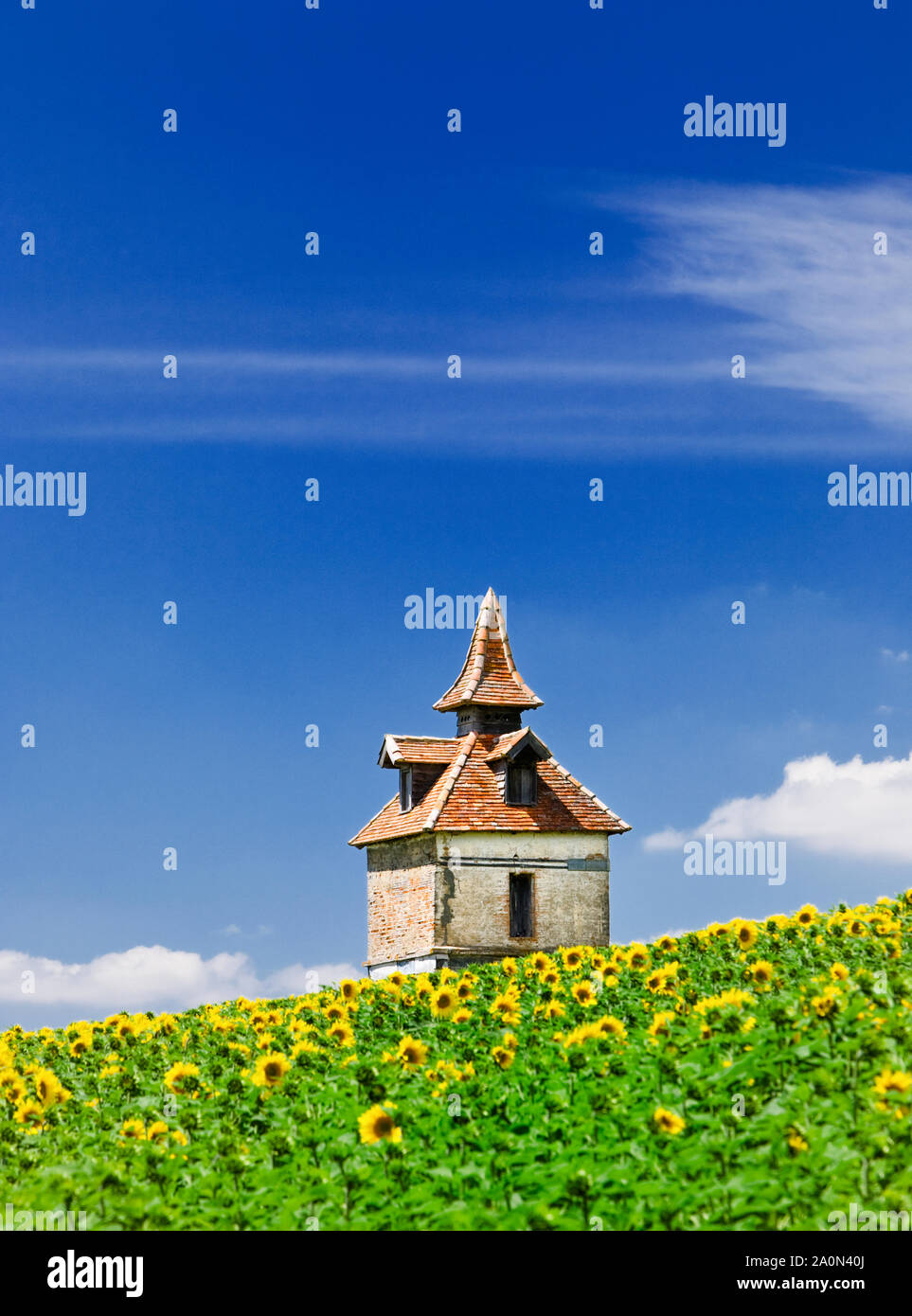 Pigeon loft or pigeonniere in the South of France Stock Photo