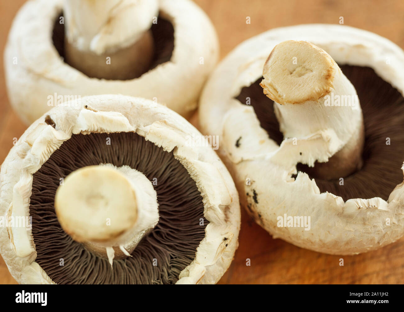 Mushrooms close up on a wooden surface Stock Photo