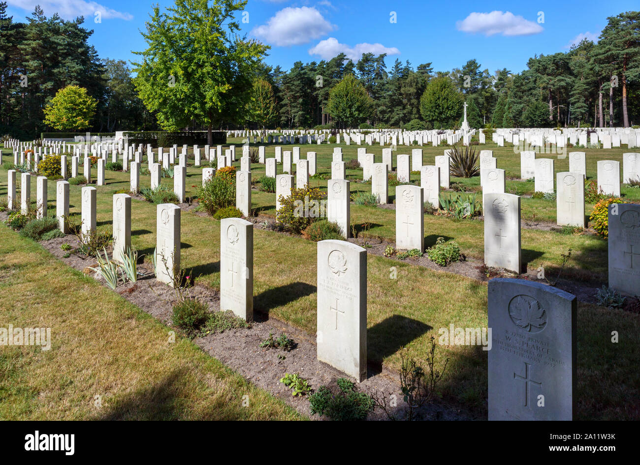Rows of gravestones in the Canadian Section of the Military Cemetery at Brookwood Cemetery, Pirbright, Woking, Surrey, southeast England, UK Stock Photo