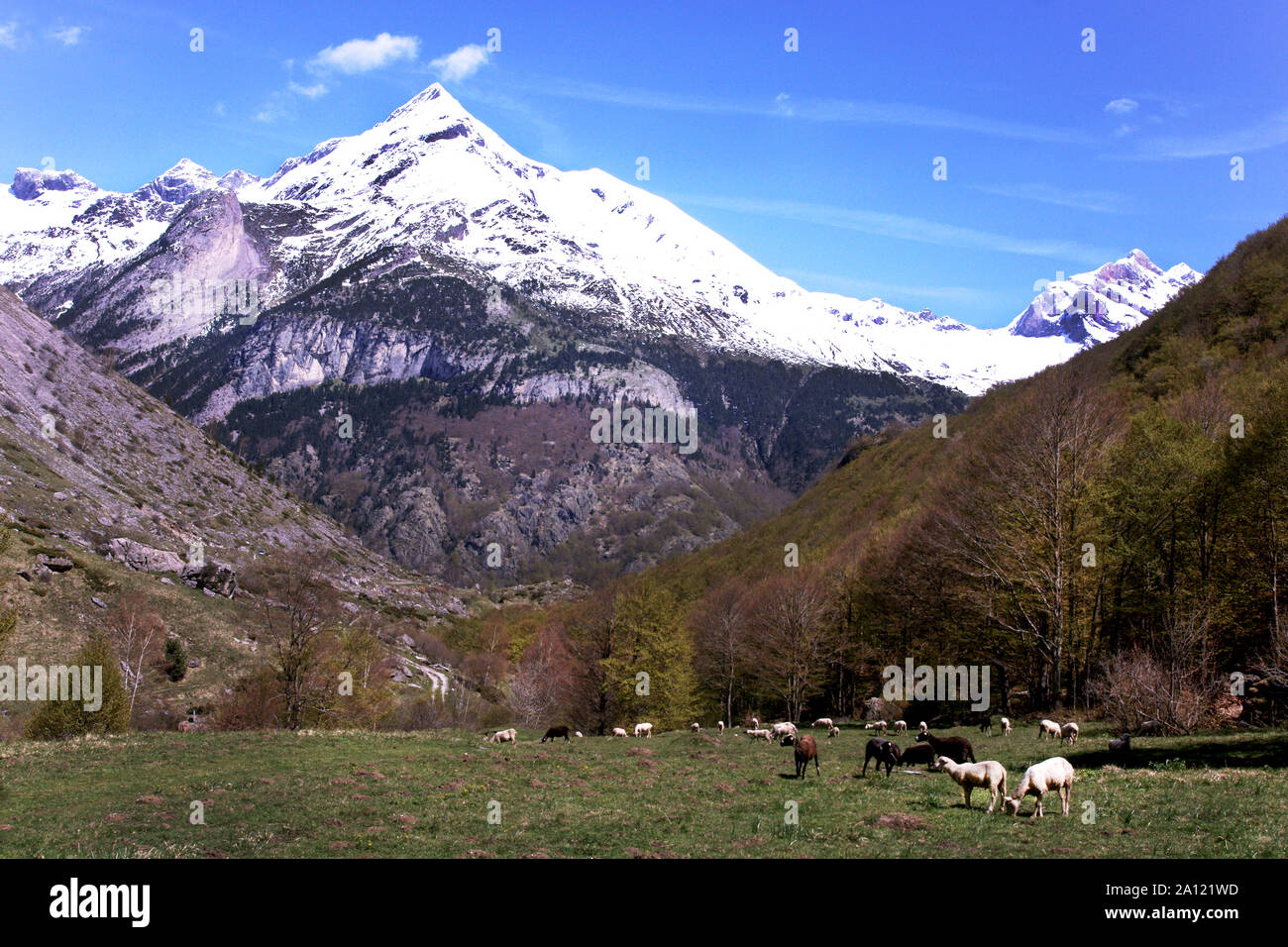 France. Hautes-Pyrenees.Mount Pimene 2801 m is at the start of the Gavarnie valley Stock Photo