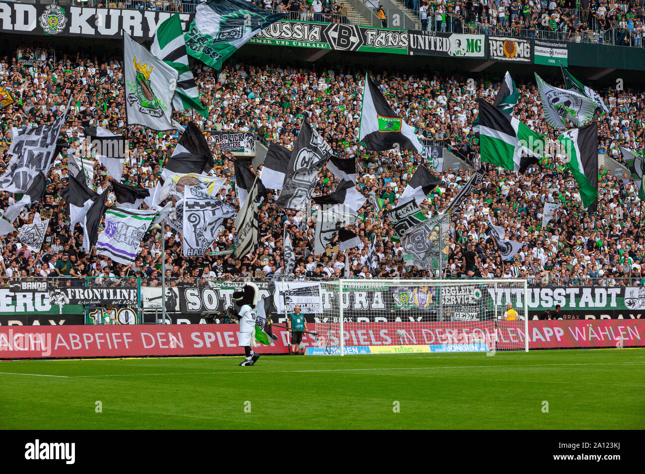 sports, football, Bundesliga, 2019/2020, Borussia Moenchengladbach vs. Fortuna Duesseldorf 2-1, Stadium Borussia Park, visitors, Gladbach football fans in the Nordkurve, flags, DFL REGULATIONS PROHIBIT ANY USE OF PHOTOGRAPHS AS IMAGE SEQUENCES AND/OR QUASI-VIDEO Stock Photo