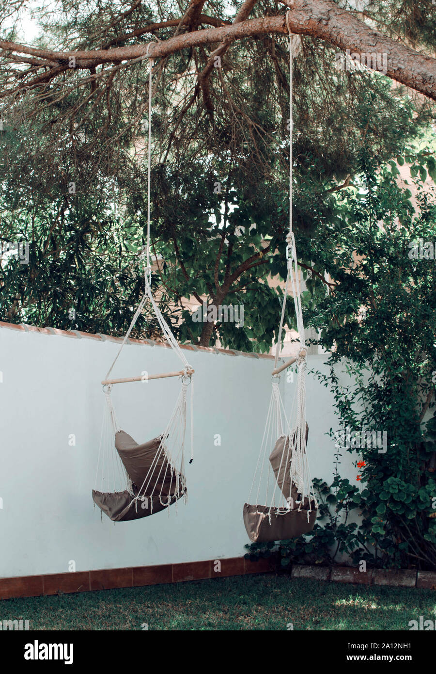 Picture of: Two Empty Hammock Chairs Hanging On A Pine Tree In Chiclana De La Frontera Cadiz Spain Stock Photo Alamy
