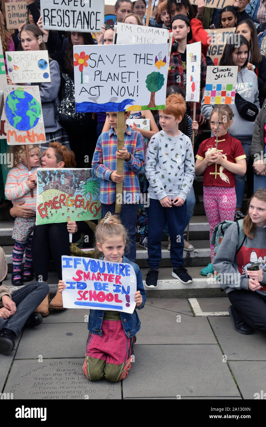 School Strike for Climate, Norwich, UK, Friday 20 September 2019 Stock Photo