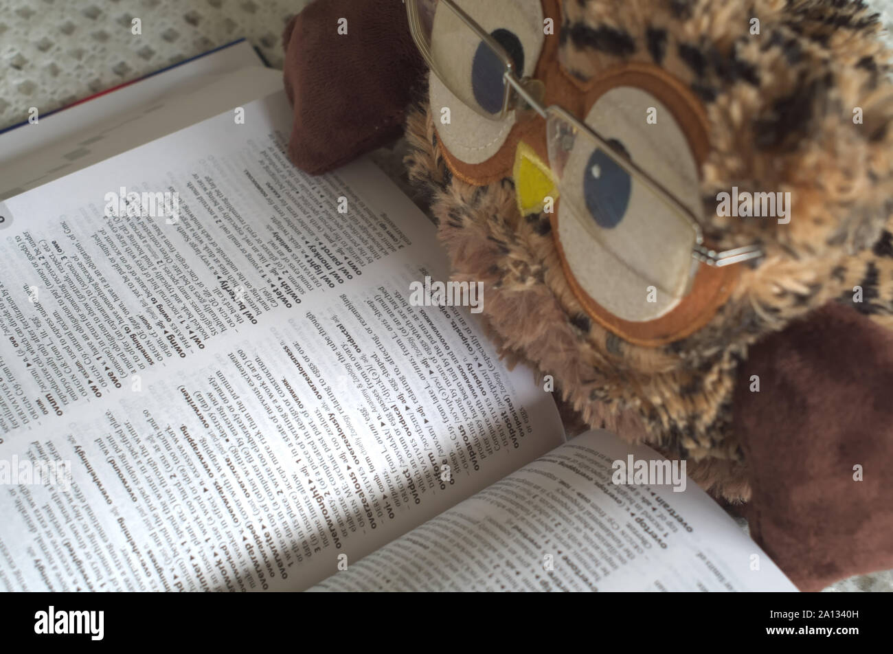 Toy Owl With Glasses on Reading a Dictionary Stock Photo