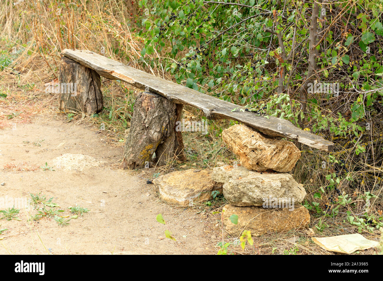A very old wooden bench, green bushes, trees, dry grass, in the Ukrainian rock garden. Stock Photo