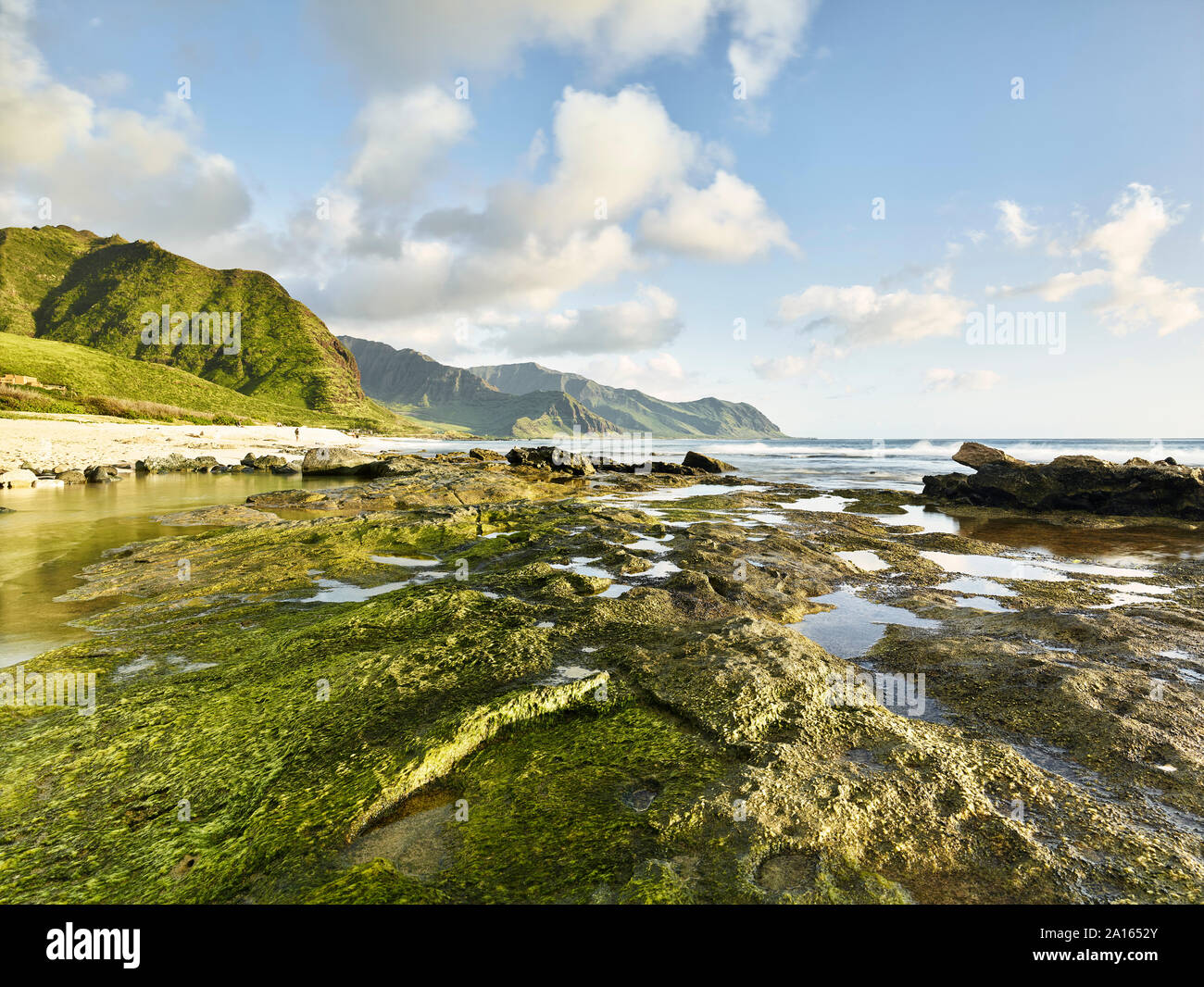 Scenic view of rocky shore at beach in Ka'ena Point State Park against sky Stock Photo