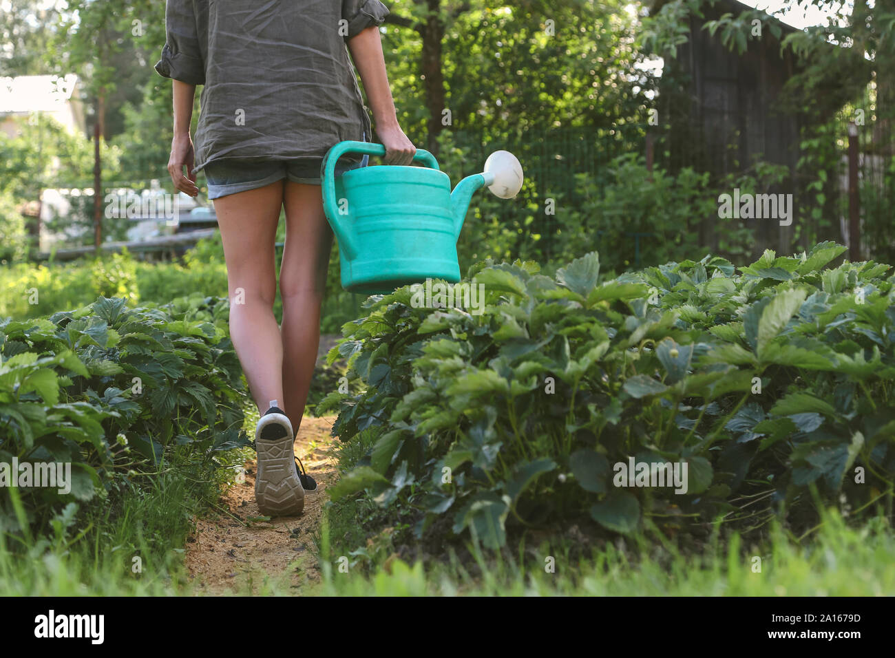 Close-up of woman with watering can walking in garden Stock Photo