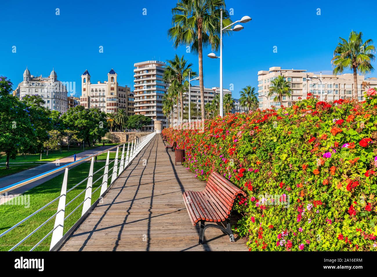 Puente de las Flores bridge, Valencia, Comunidad Valenciana, Spain Stock Photo