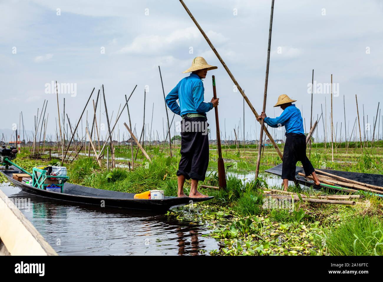 Floating Gardens, Lake Inle, Shan State, Myanmar Stock Photo