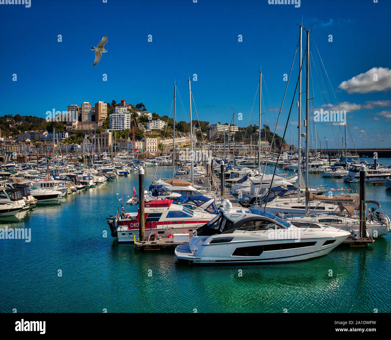 GB - DEVON: Torquay Outer Harbour and Town  (HDR-Image) Stock Photo