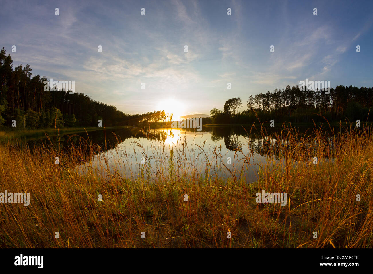 Lake in forest. Shooted with fisheye lens Stock Photo
