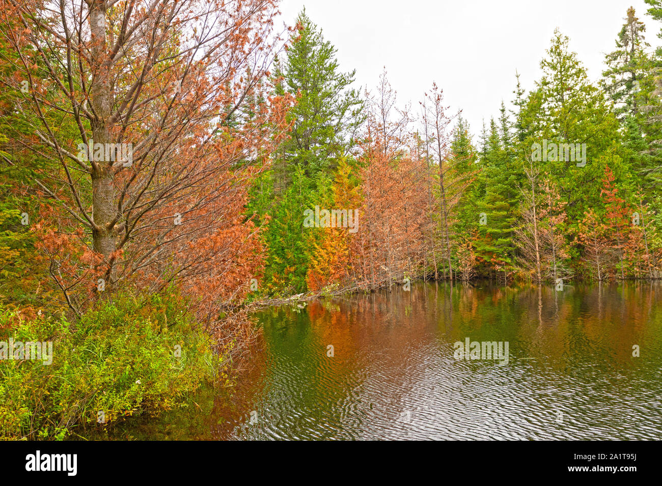 Boundary Dam Stock Photos & Boundary Dam Stock Images - Alamy