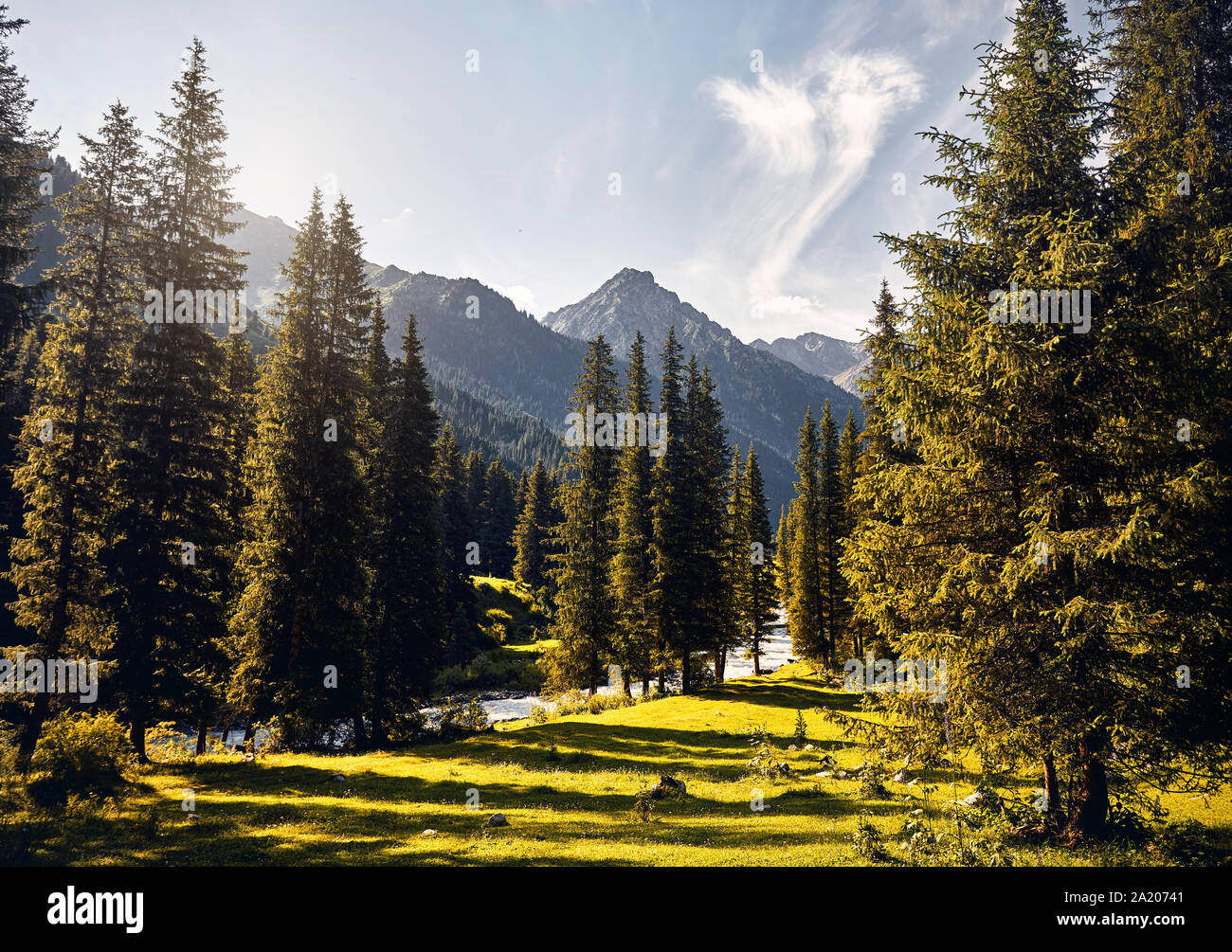 Landscape of river and mountain valley with spruce trees and snowy peak in Karakol national park, Kyrgyzstan Stock Photo