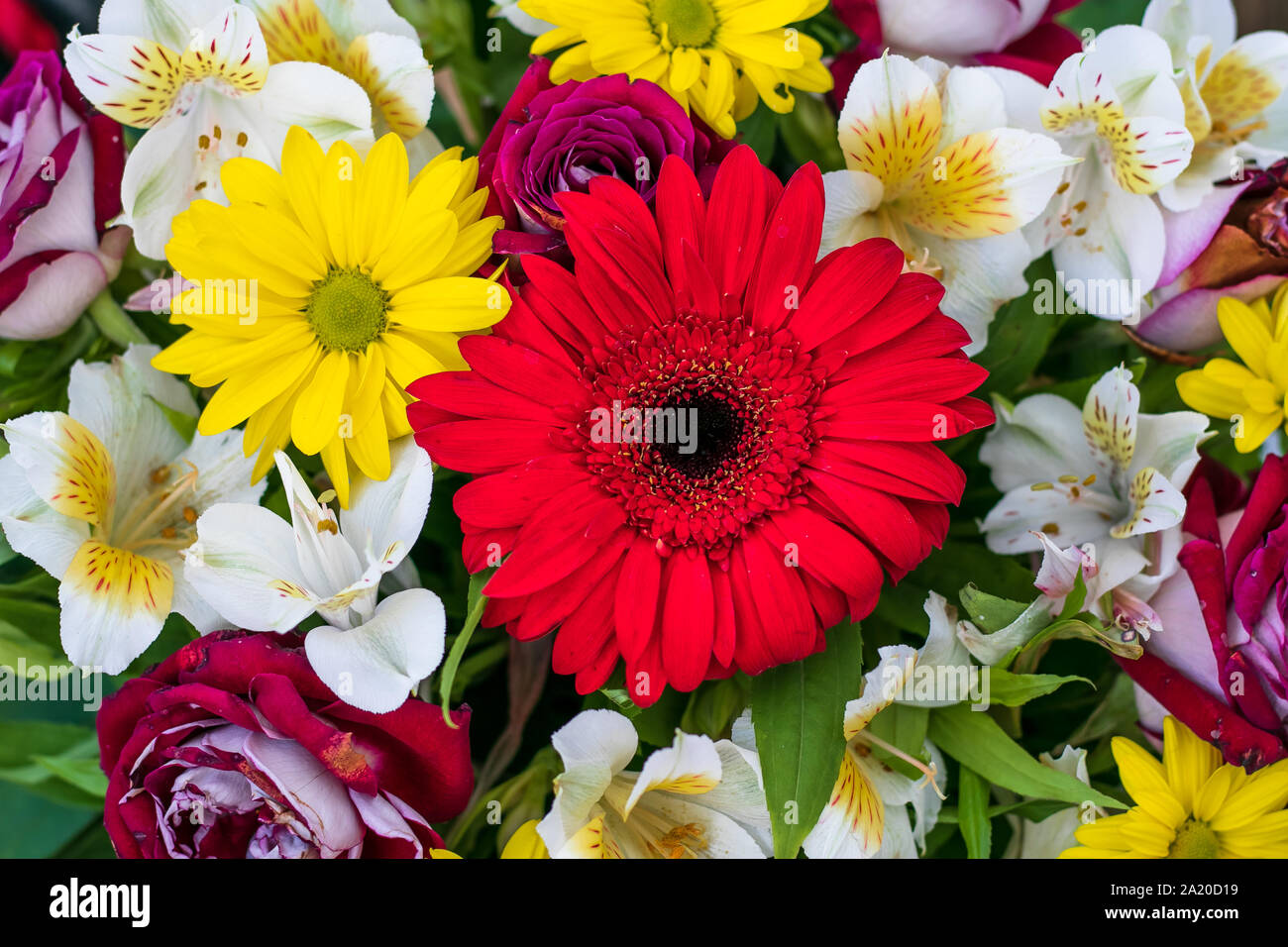 Bouquet of fresh flowers. Flower arrangement. Floral background, pattern. Bright colorful greeting card. Top view. Stock Photo