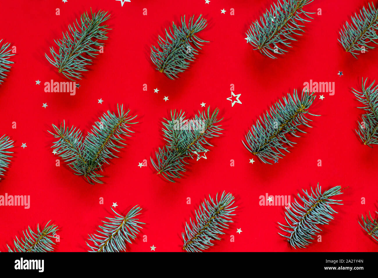 festive pattern made of blue christmas tree branches and silver star shaped confetti on a red background 2A21Y4N