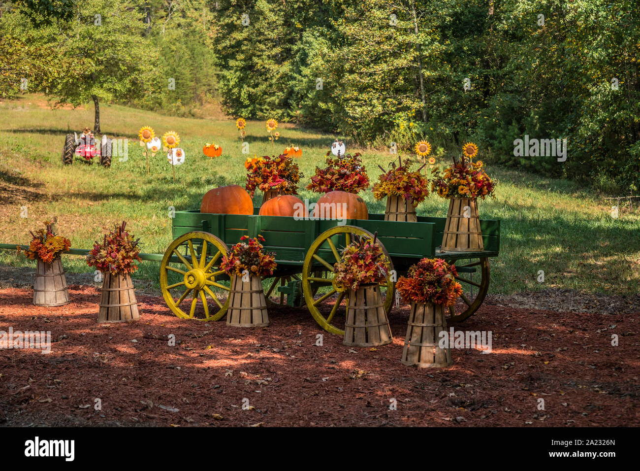 An Autumn Holiday Festive Display Of A Green Wooden Wagon With Pumpkins And Fall Flowers On Baskets In A Farm Field On A Sunny Day Stock Photo Alamy