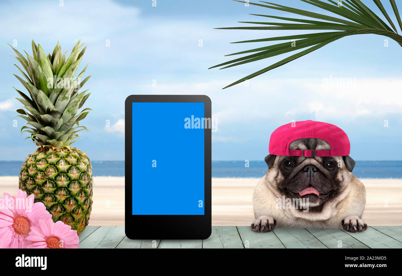 smiling tropical summer pug dog with cap and tablet, with paws on vintage green wooden table and sea and beach on background Stock Photo
