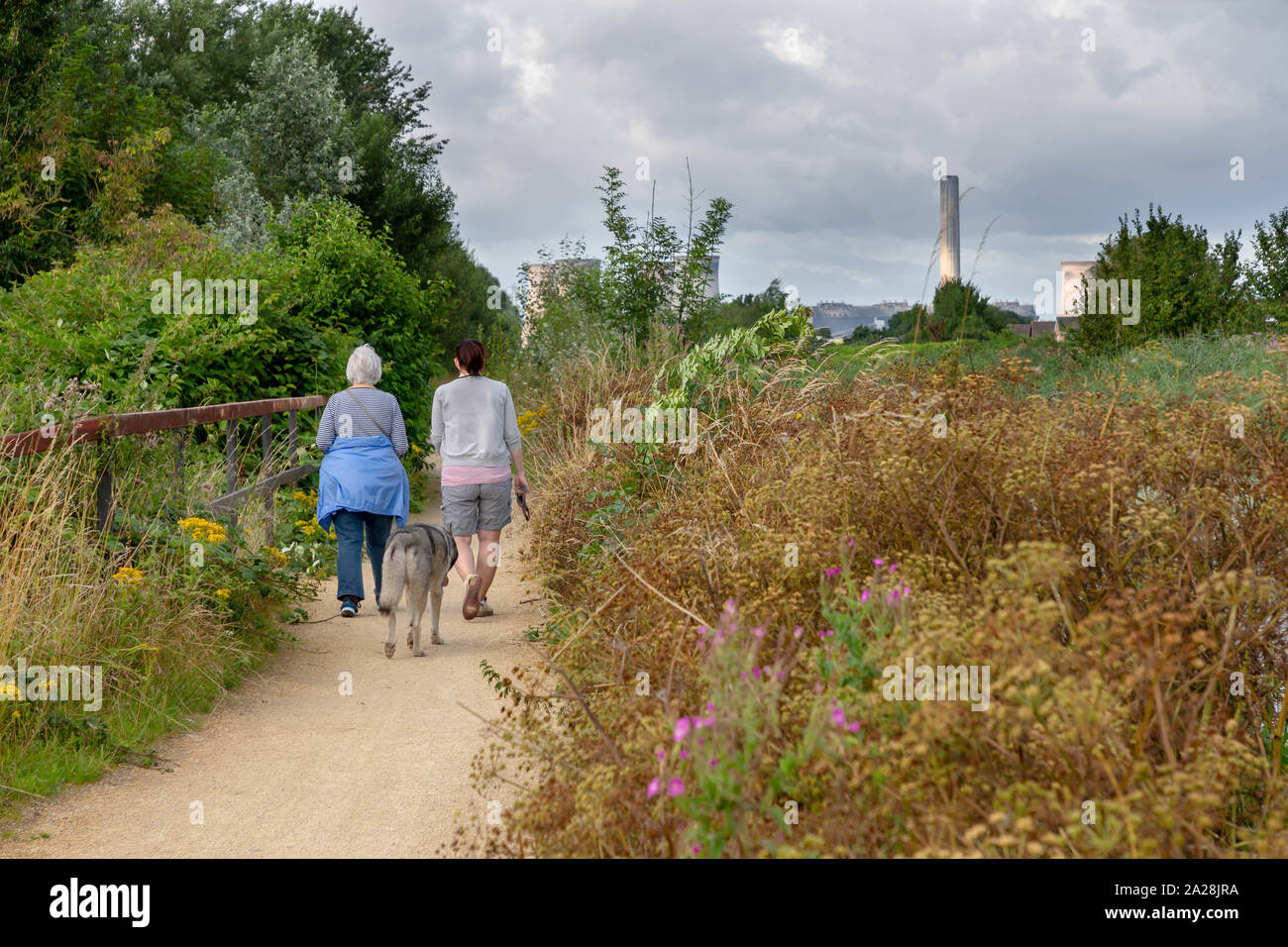 Two ladies and their dog walk along the Trans Pennine Trail, St Helen's Canal, Gatewarth, Warrington Stock Photo