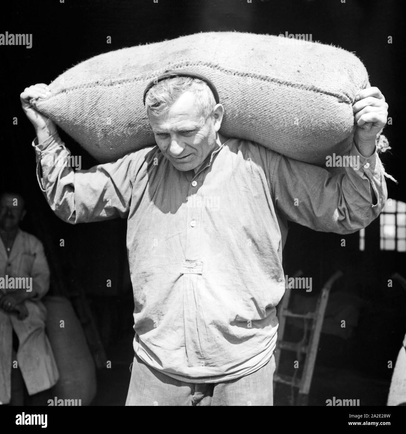 Ein Lagerarbeiter schleppt einen Sack aus dem Lagerhaus, Deutschland 1930er Jahre. A warehouseman carrying a sack out iof a warehouse, Germany 1930s. Stock Photo