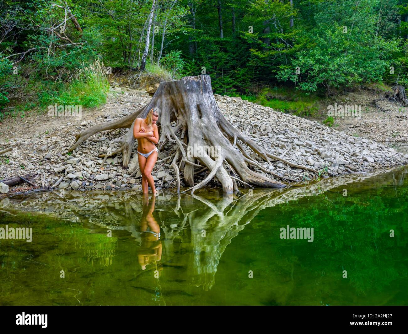Young almost nude attractive woman in nature standing next to besides  big tree stump root near lake coastline Green forest blonde hair looking down Stock Photo