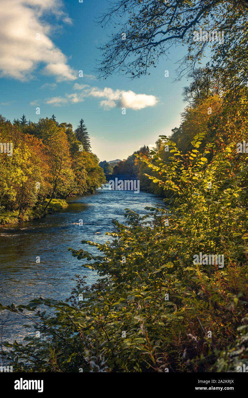 Fall Leaves on Trees on the Banks of the River Teith in Scotland with Doune Castle and Stone Bridge in the Background Stock Photo