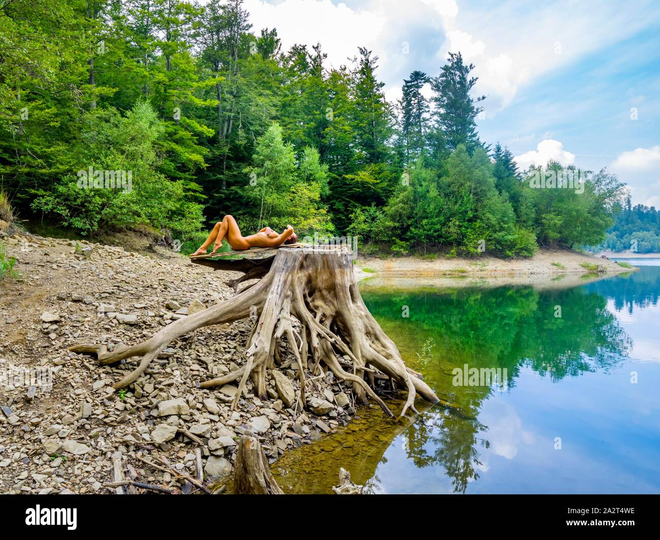 Young nude attractive woman in nature lying down on big tree stump root atop near lake coastline Green forest Stock Photo