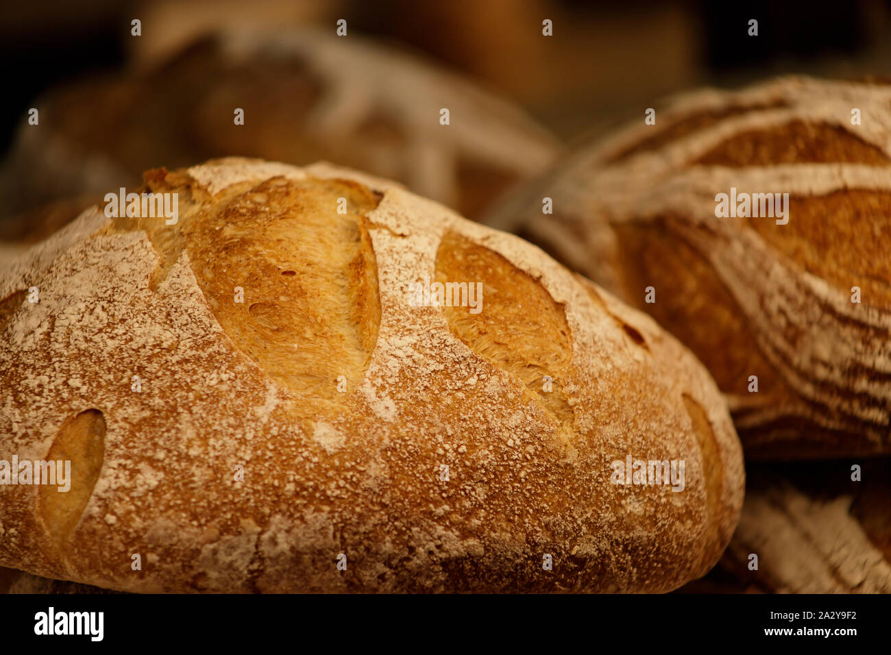Fresh round rye bread with crispy crust. Rustic organic food. Close-up, selective focus. Stock Photo