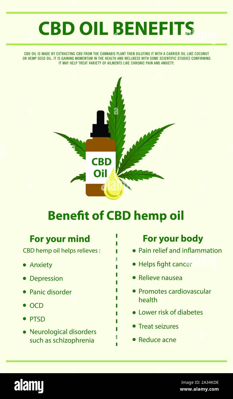 CBD Oil Benefits vertical infographic illustration about cannabis as herbal alternative medicine, healthcare and medical science vector. Stock Vector
