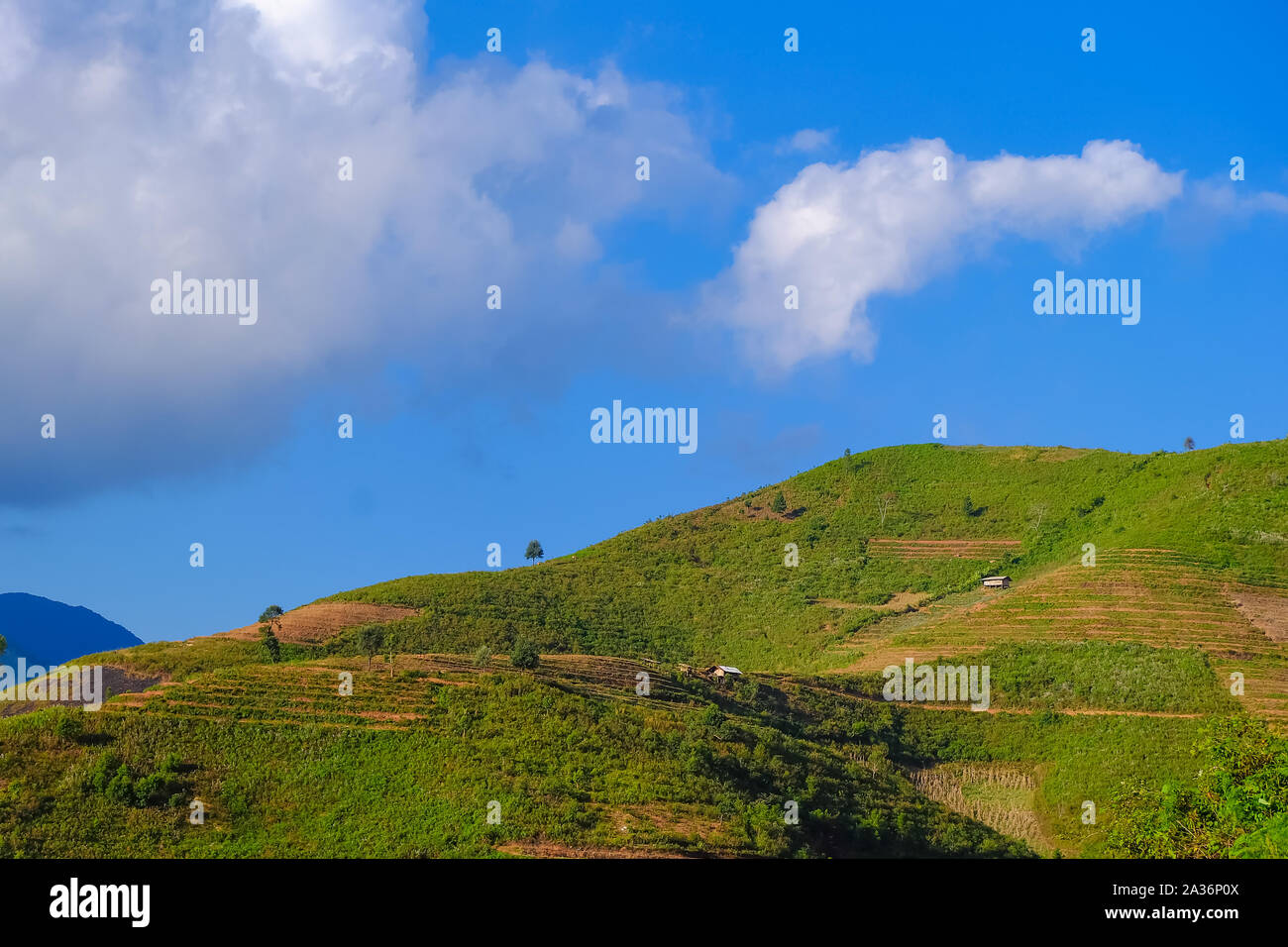Beautiful landscape of mountain with cloud and blue sky in Ta Xua, Northwest Vietnam. Royalty high quality stock image of landscape, mountain. Stock Photo
