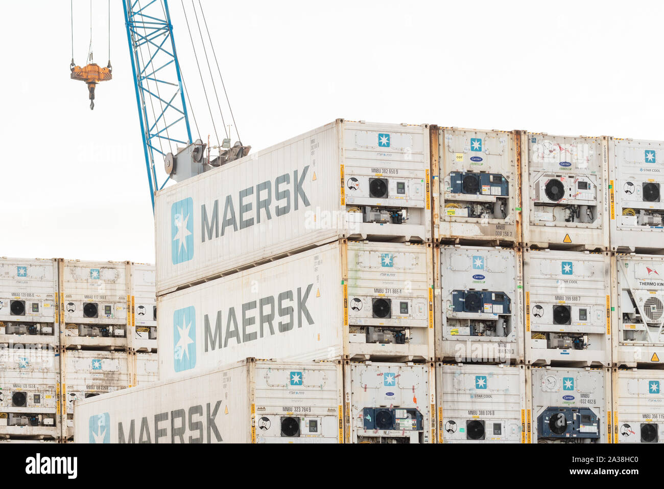 Maersk refrigerated shipping containers Stock Photo