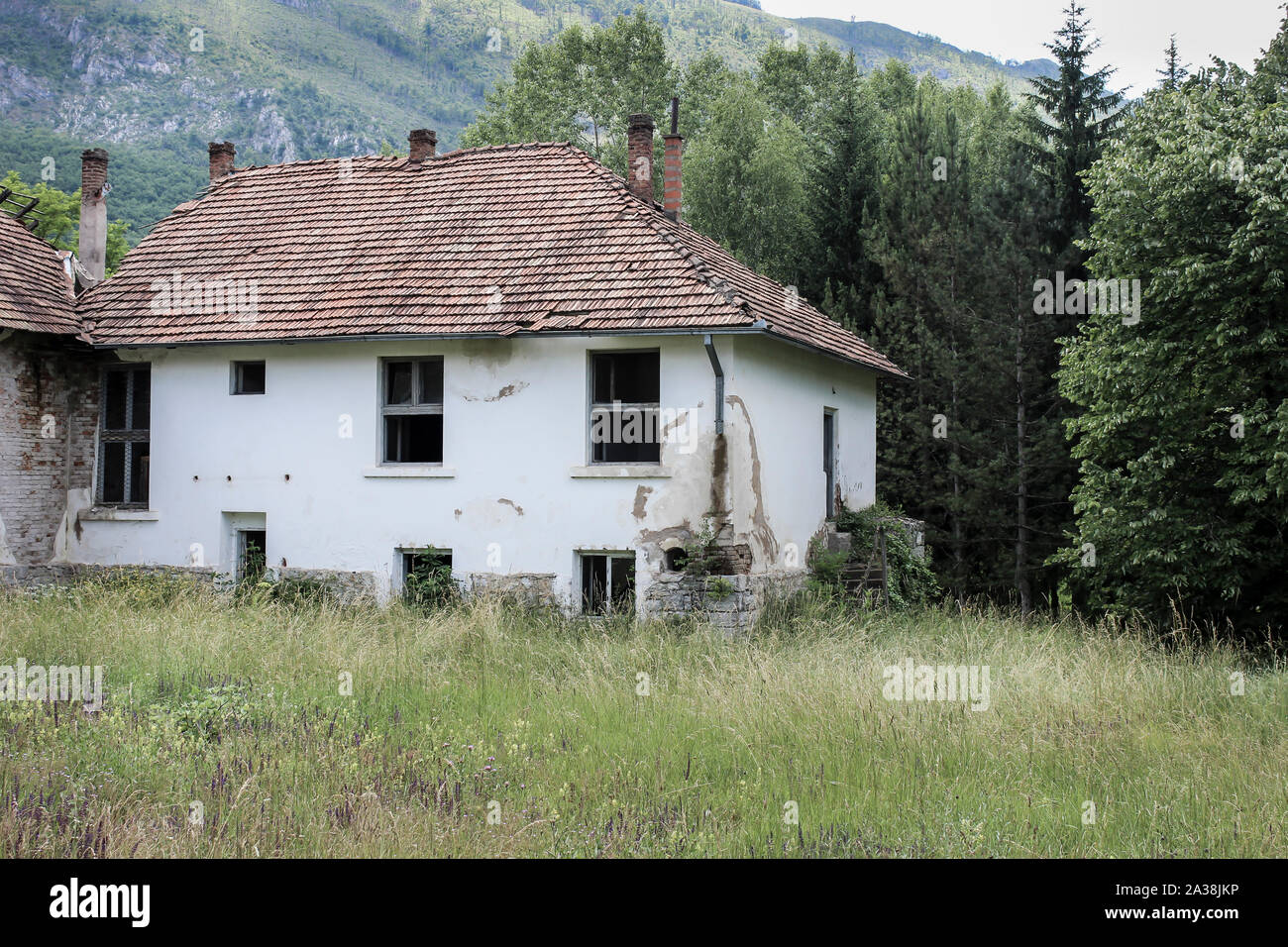 Desaturated view of old, abandoned, ruined school building on a mountain, foreground long grass and background pine trees Stock Photo