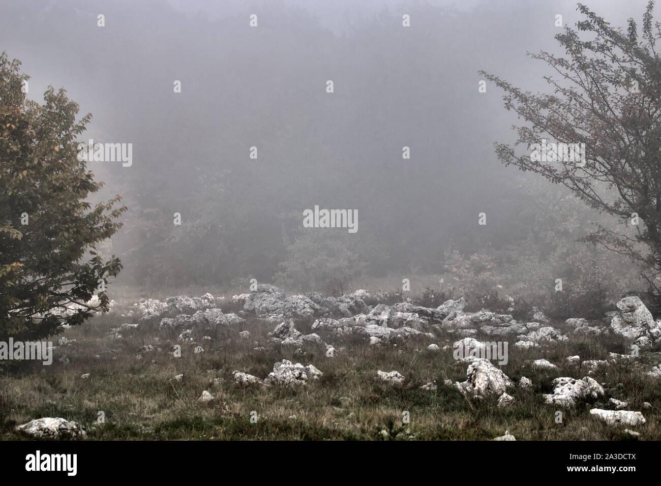 Mountain areas and Alpine meadows in fog, misty mountain Stock Photo