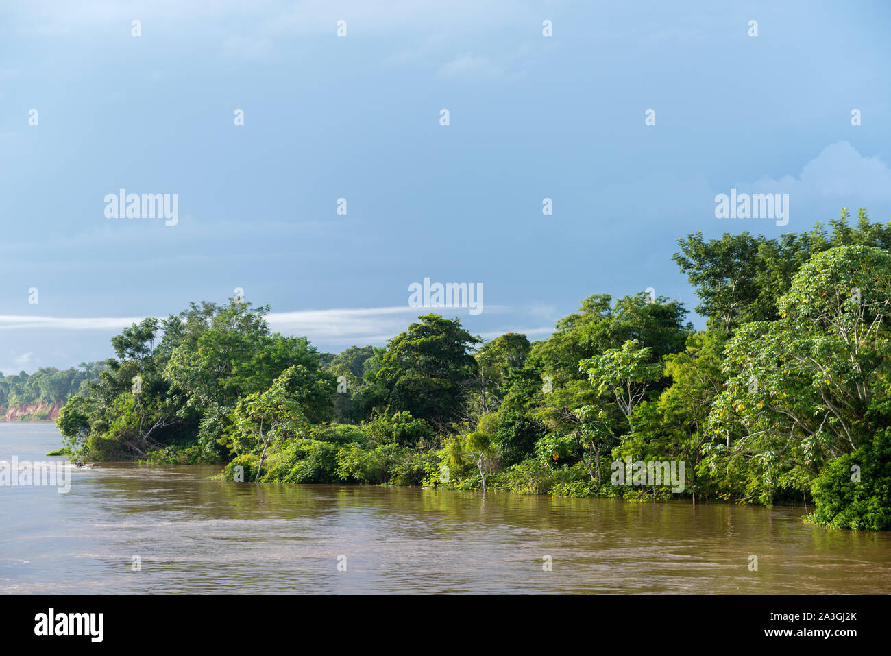 A  two-day-riverboat trip from Manaus to Tefé on the Amazonas River or Rio Solimoes, end of rainy season, The Amazon, Brazil, Latin America Stock Photo