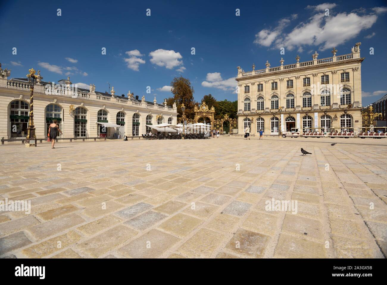 France, Meurthe and Moselle, Nancy, place Stanislas (former Place Royale) built by Stanislas Leszczynski, king of Poland and last duke of Lorraine in the eighteenth century, classified World Heritage of UNESCO, Amphitrite fountain designed by Guibal and gold racks of Jean Lamour Stock Photo
