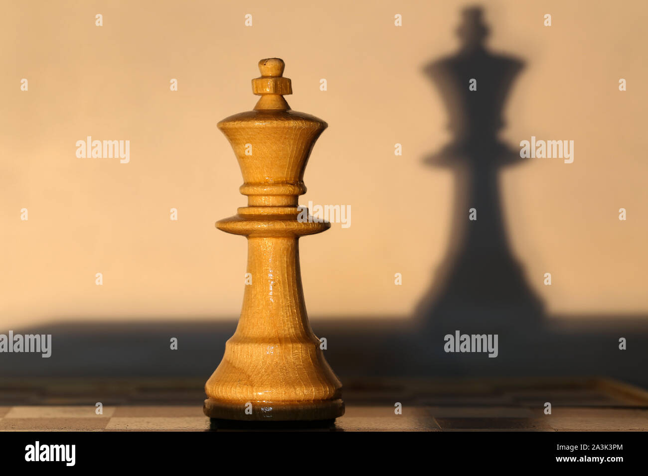 Chess Piece King And Shadow From Her Stock Photo Alamy