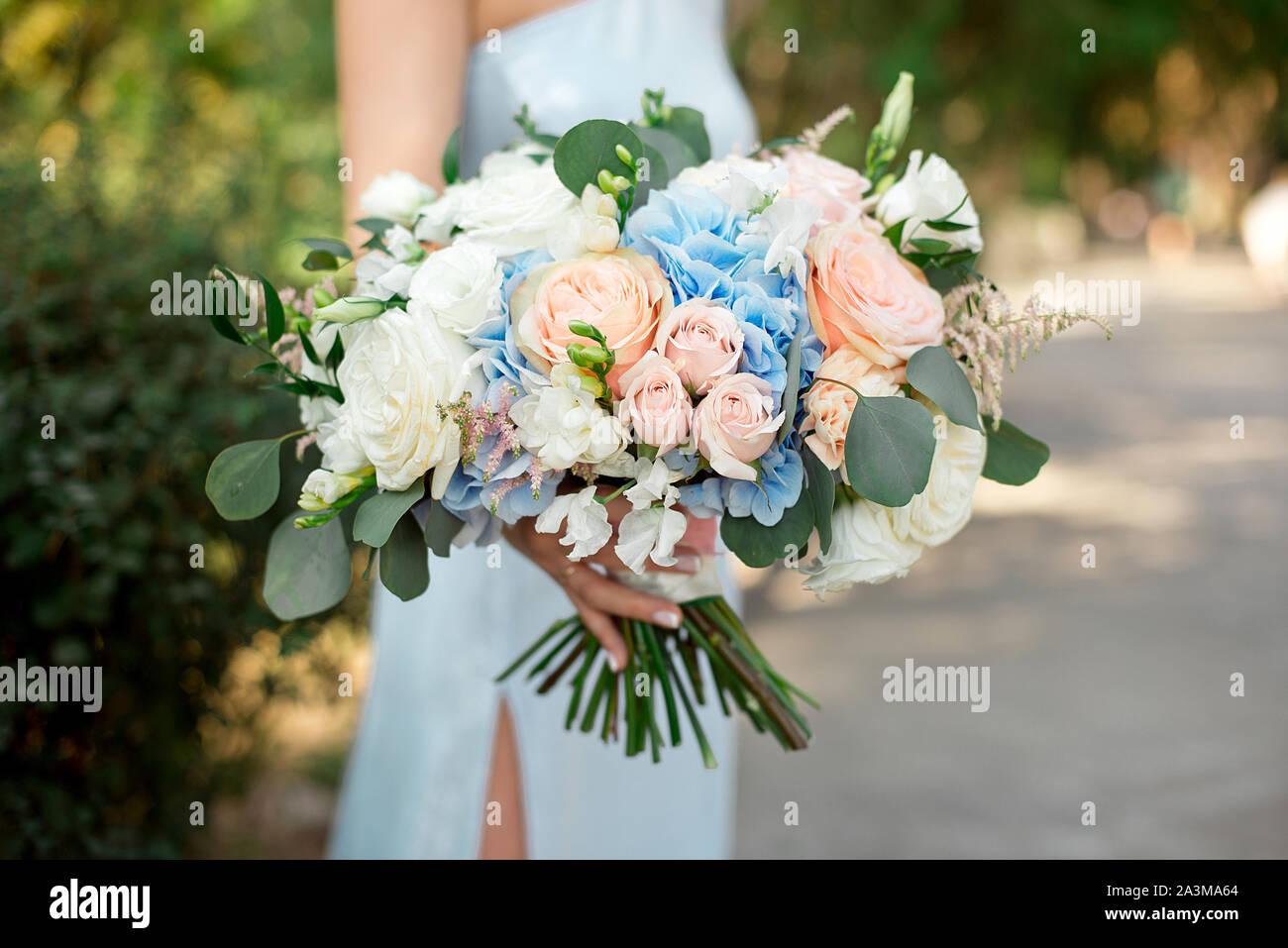 Girl holds in her hands a gorgeous bouquet of roses, hydrangeas, ozotamnus, hypericum, eucalyptus Stock Photo