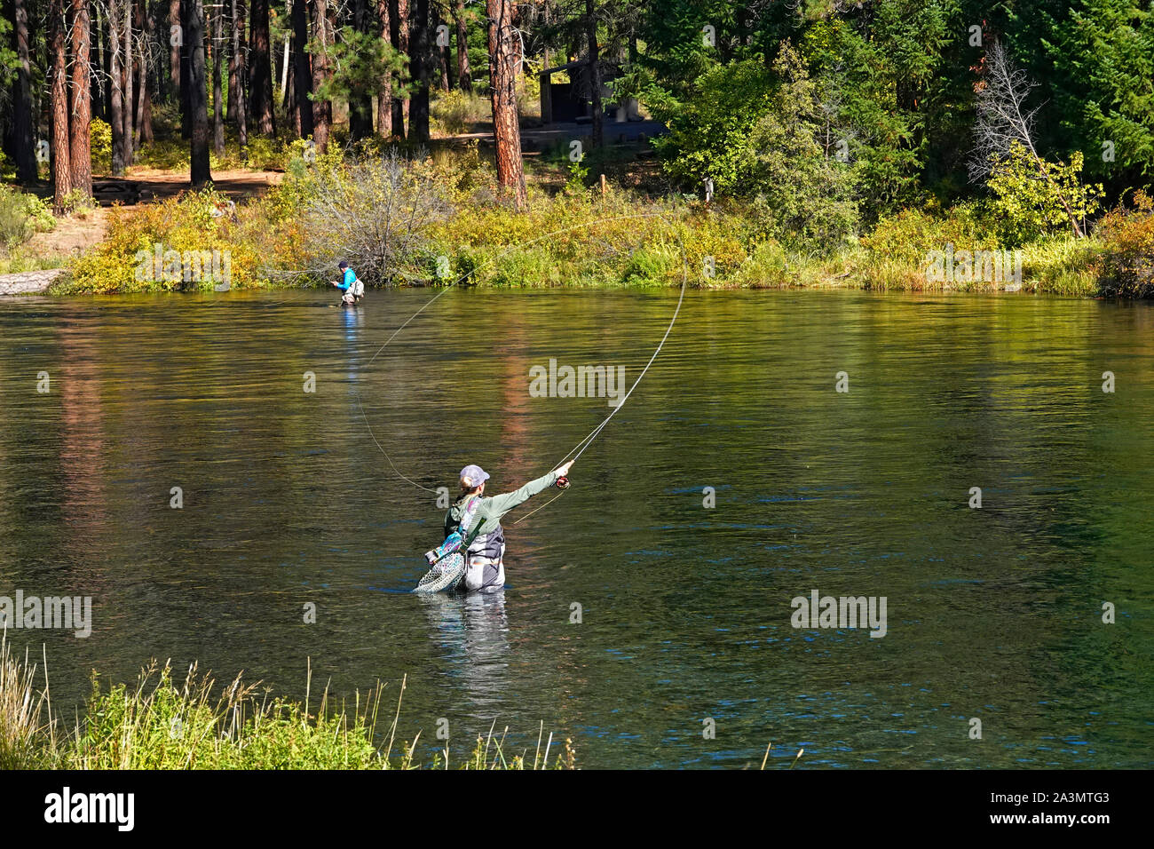 A female flycaster fishes a pool on the beautiful Metolius River in the central Oregon Cascade Mountains Stock Photo
