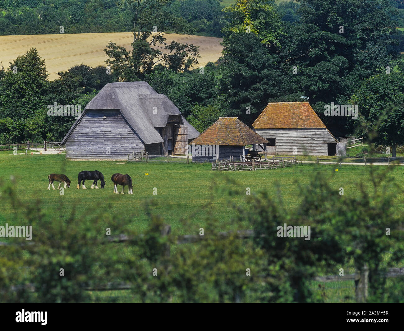 Court Barn from Lee-on-Solent, location for the filming of the  BBC series The Repair Shop, Weald and Downland Living Museum. South Downs. West Sussex. England. Stock Photo