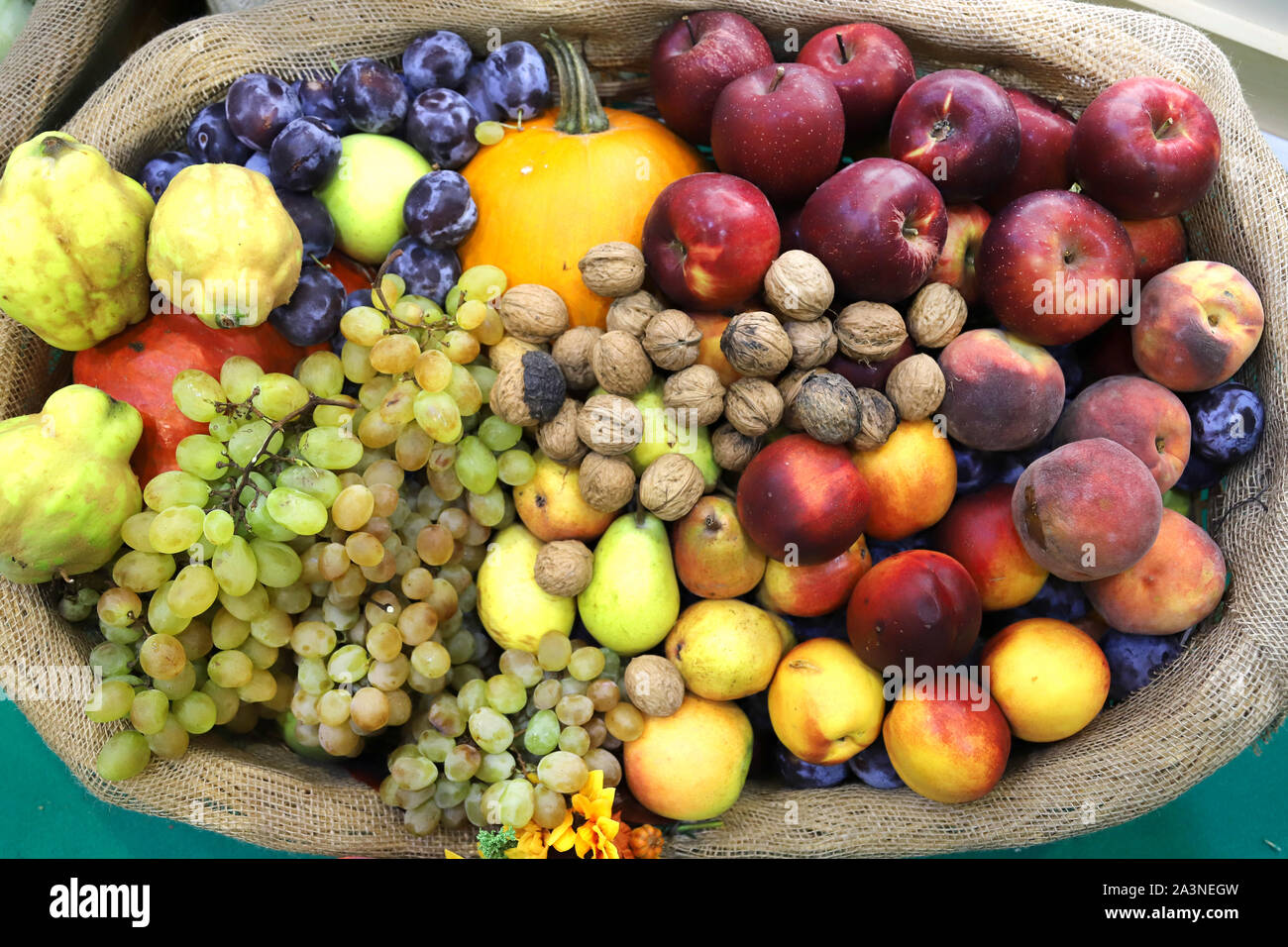 in basket as a background. Autumn fruit foods products as a background. Healthy organic harvest fruits as seasonal kitchen ingredients Stock Photo