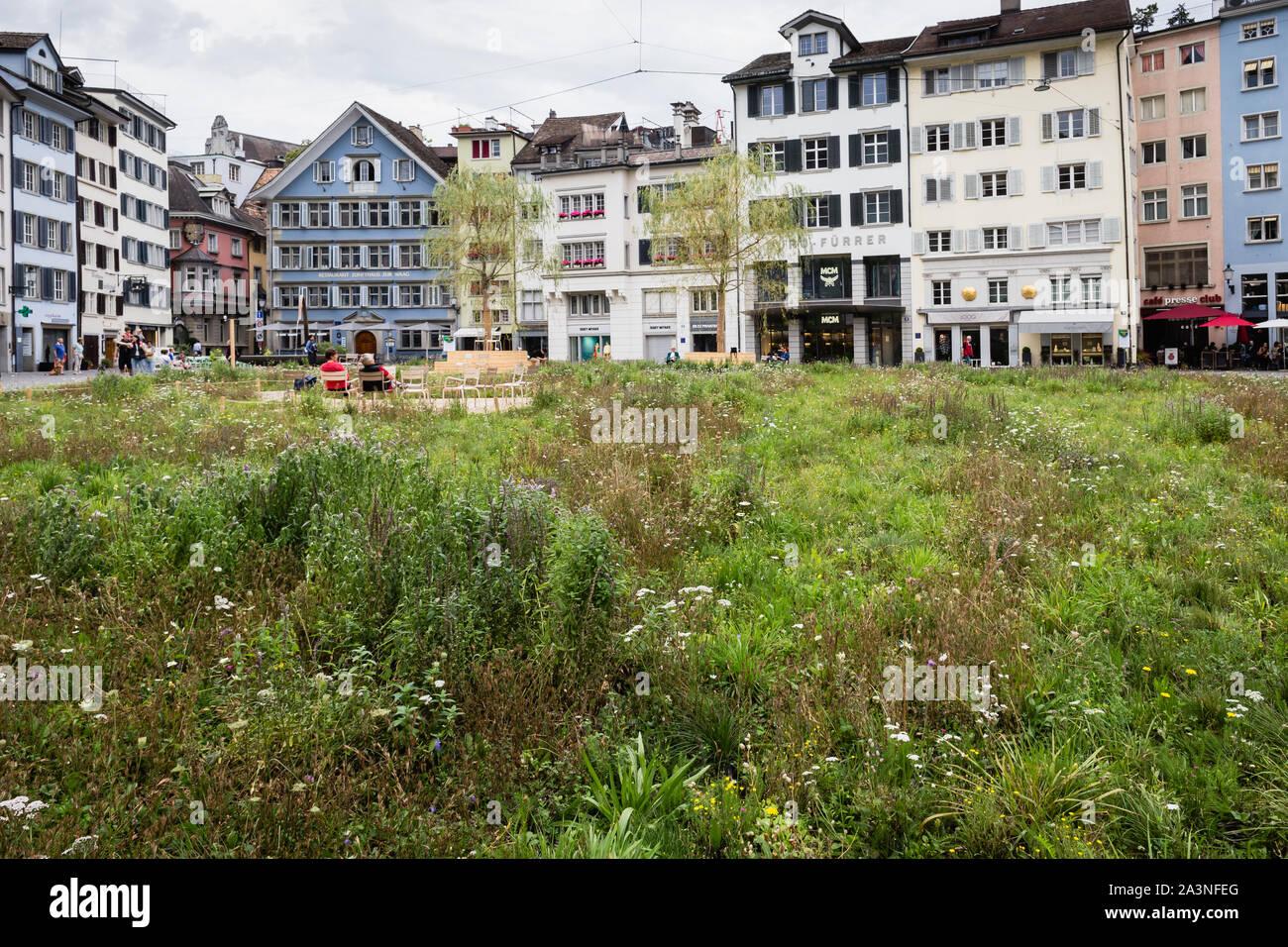 Insel in der Stadt meadow installed by the artist Heinrich Gartentor in the Münsterhof square in Zurich, Switzerland Stock Photo