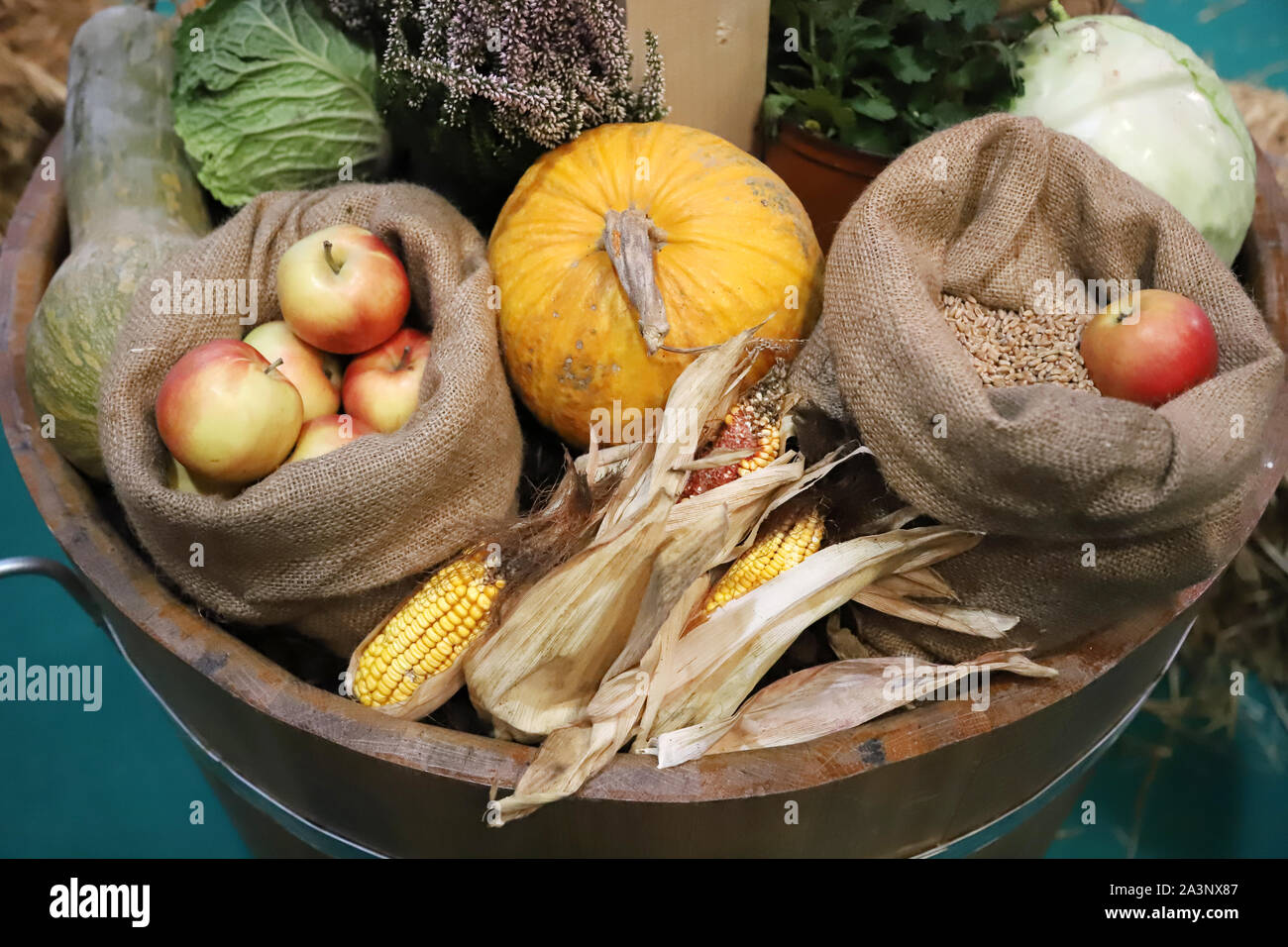 Group of various vegetables and fruits as an autumn background. Autumn foods products as a background. Healthy organic harvest fruits and vegetables a Stock Photo