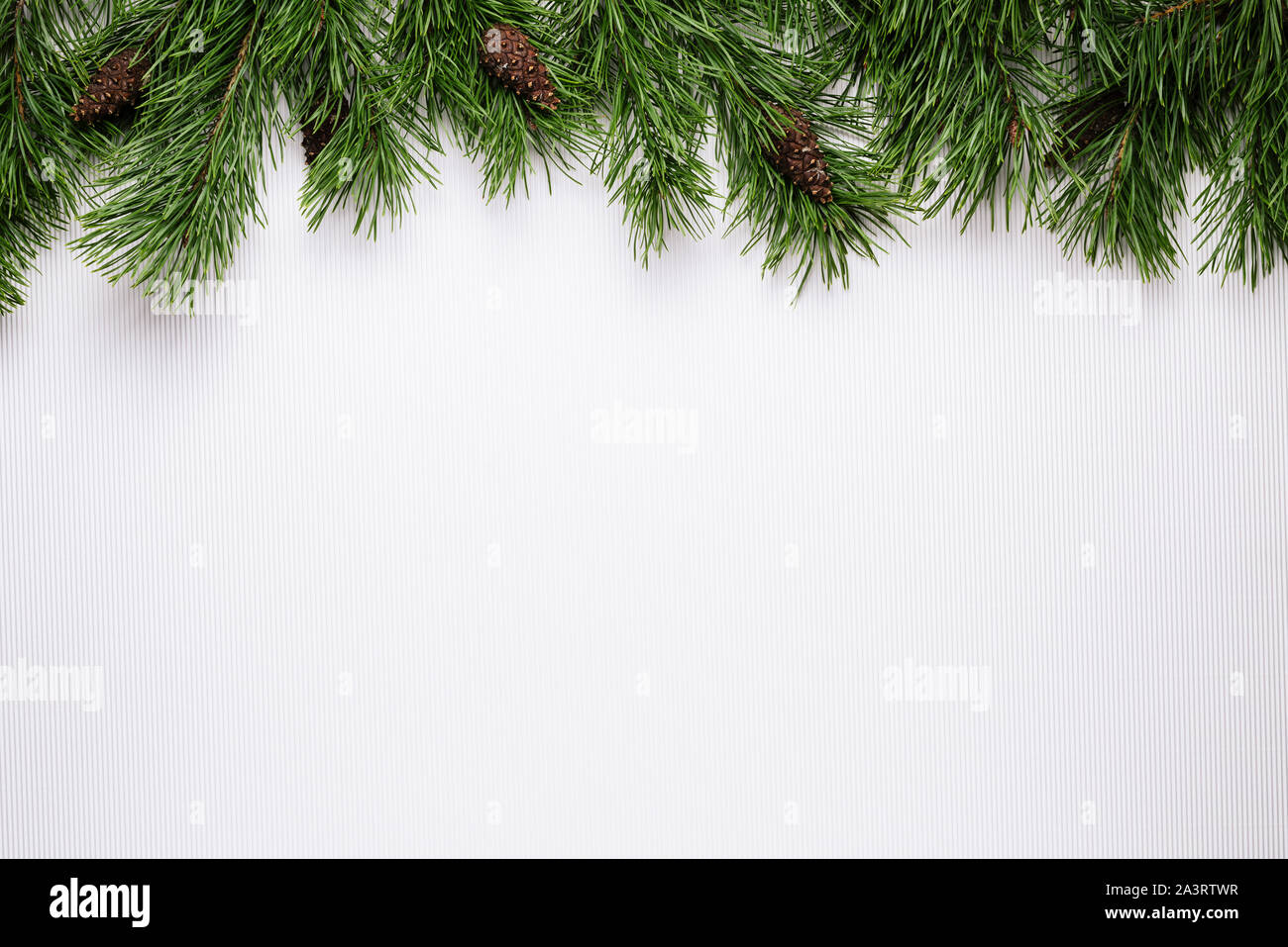 merry christmas or new year white background with pine branch border stock photo alamy alamy
