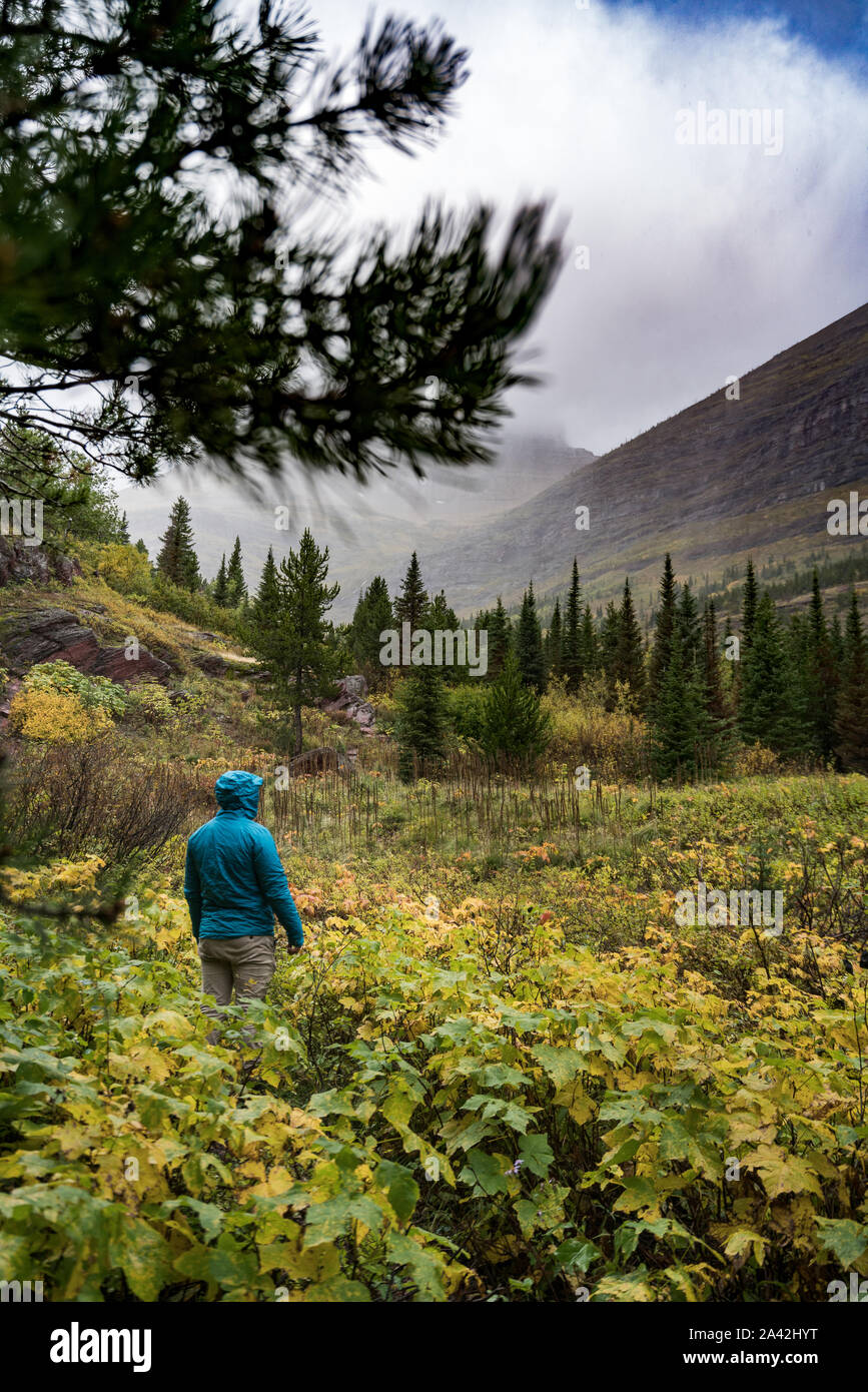 A person in a blue Jacket with an amazing landscape in the background with fall calors, Montana. Stock Photo