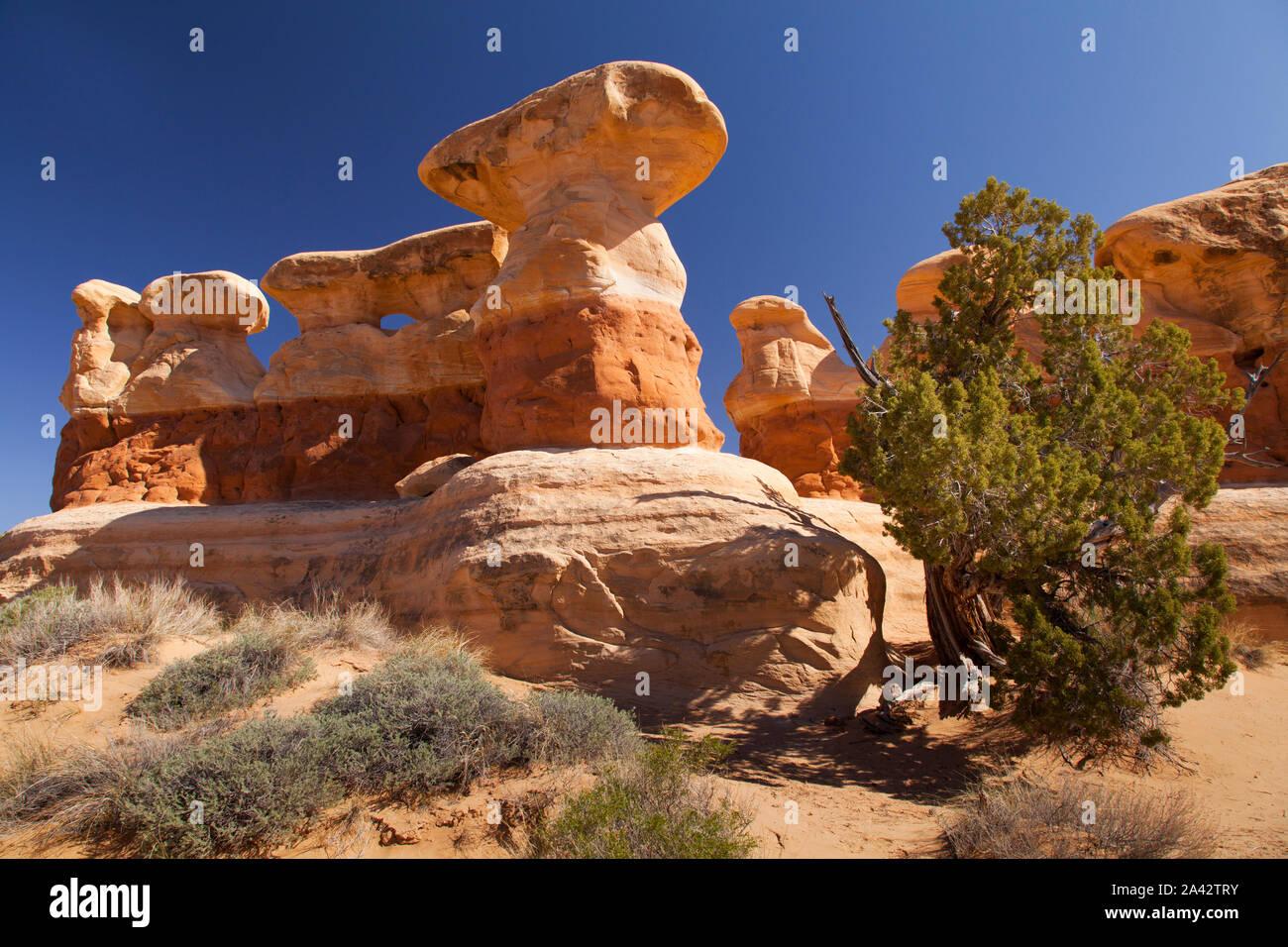 Rock formations, Devil's Garden, Grand Staircase-Escalante National Monument, Utah Stock Photo