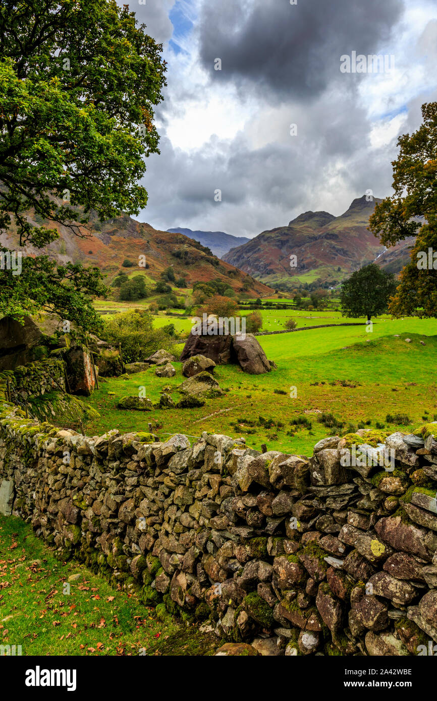 great langdale valley,lake district national park, cumbria, england, uk gb Stock Photo