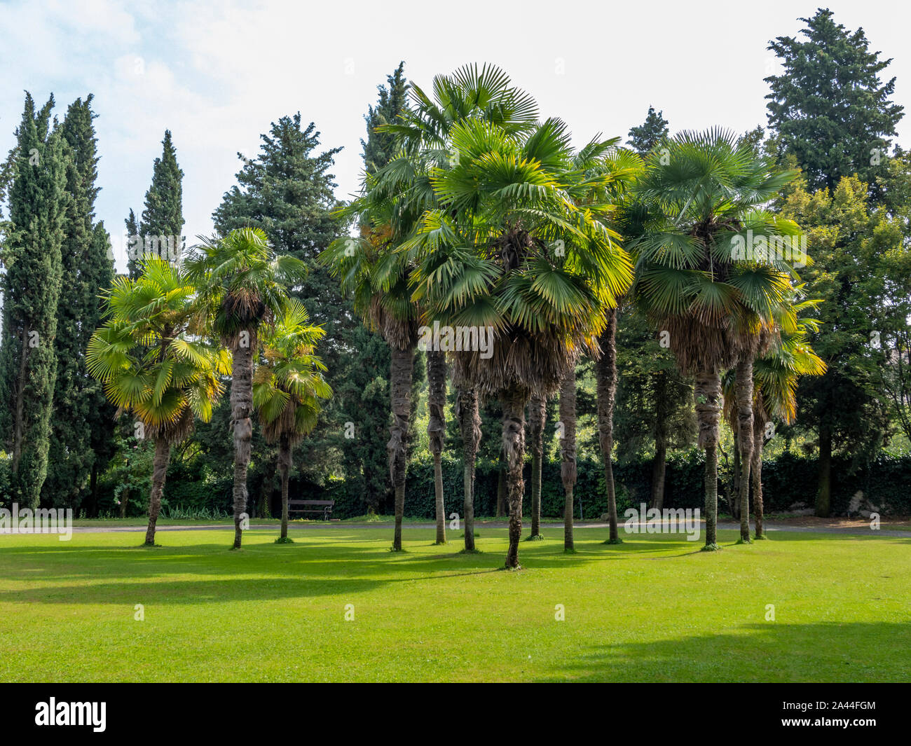 Park and Garden Sigurtá in Valeggio sul Mincio, Veneto, Italy Stock Photo