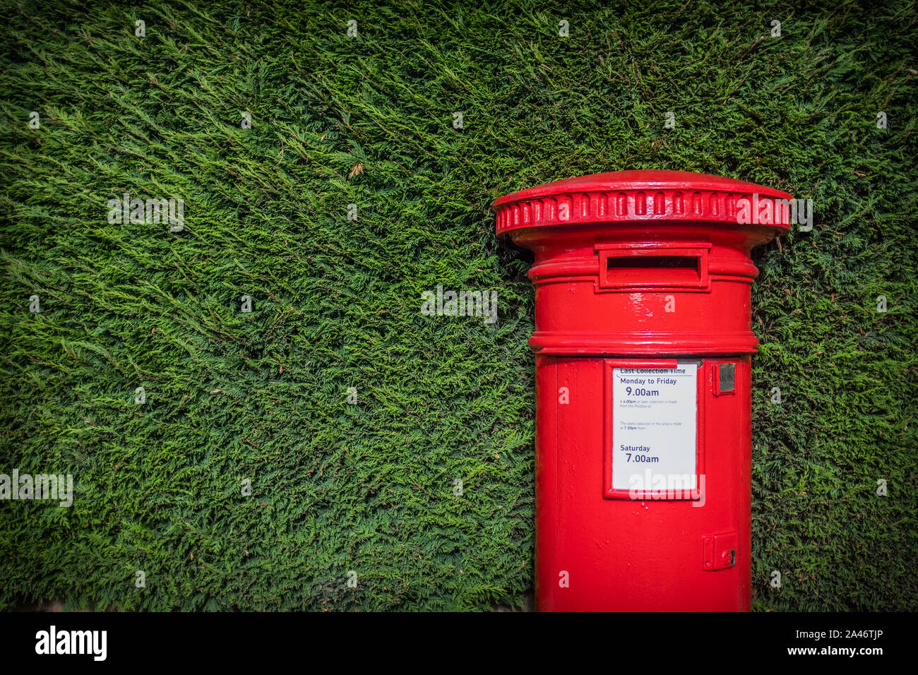 A Striking Red British Post Box Set Against A Neat Green hedgerow In England Stock Photo